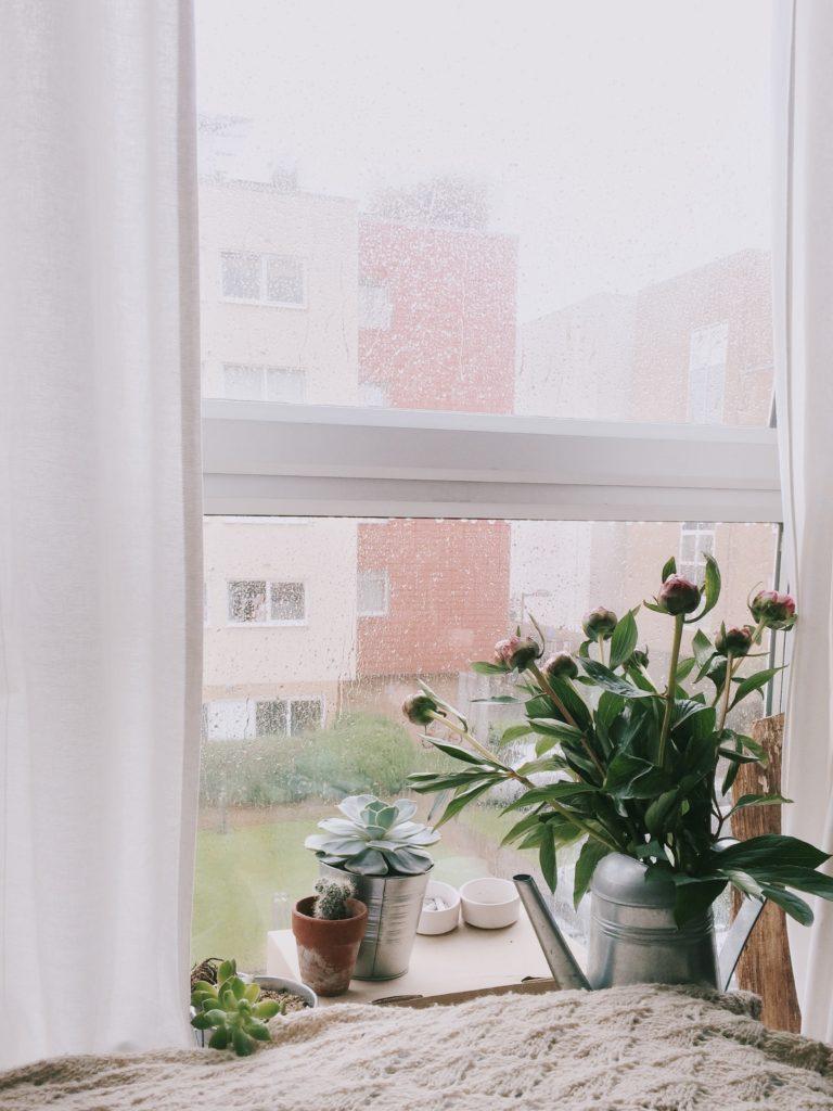 apartment-architecture window