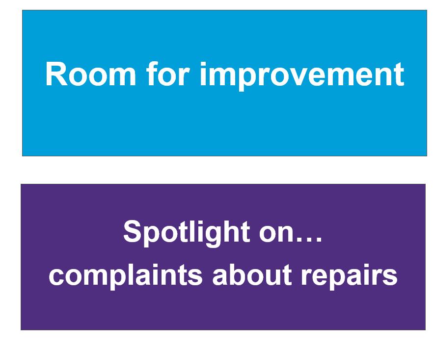Spotlight on repairs report image